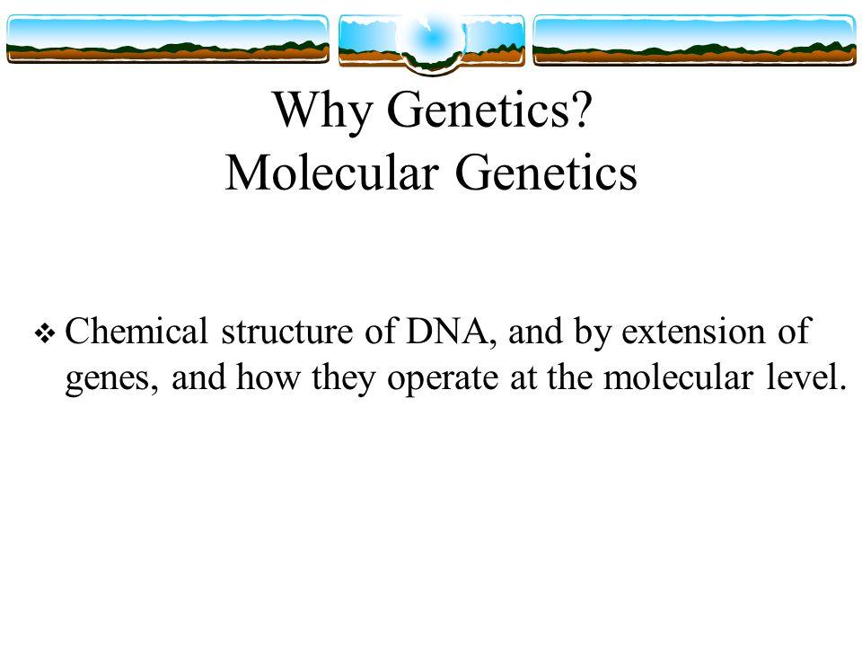 Why Genetics.