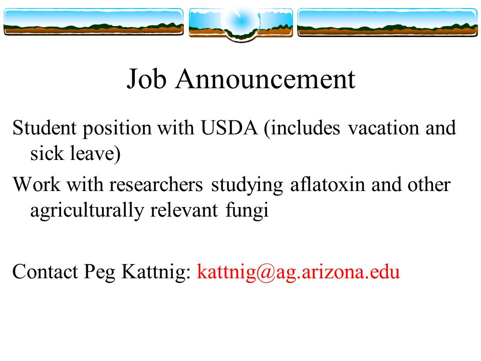 Job Announcement Student position with USDA (includes vacation and sick leave) Work with researchers studying aflatoxin and other agriculturally relevant fungi Contact Peg Kattnig: kattnig@ag.arizona.edu