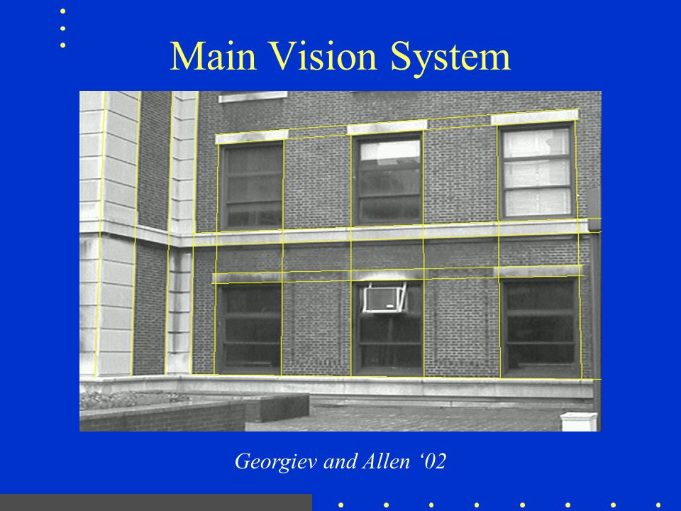 Main Vision System Georgiev and Allen '02