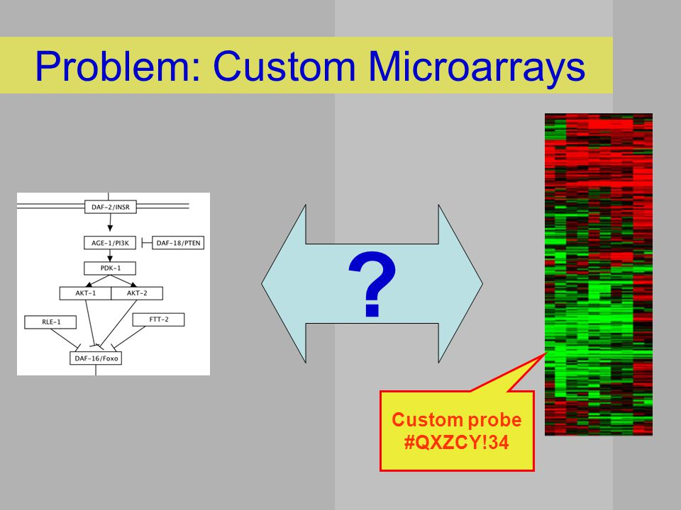 Problem: Custom Microarrays Custom probe #QXZCY!34