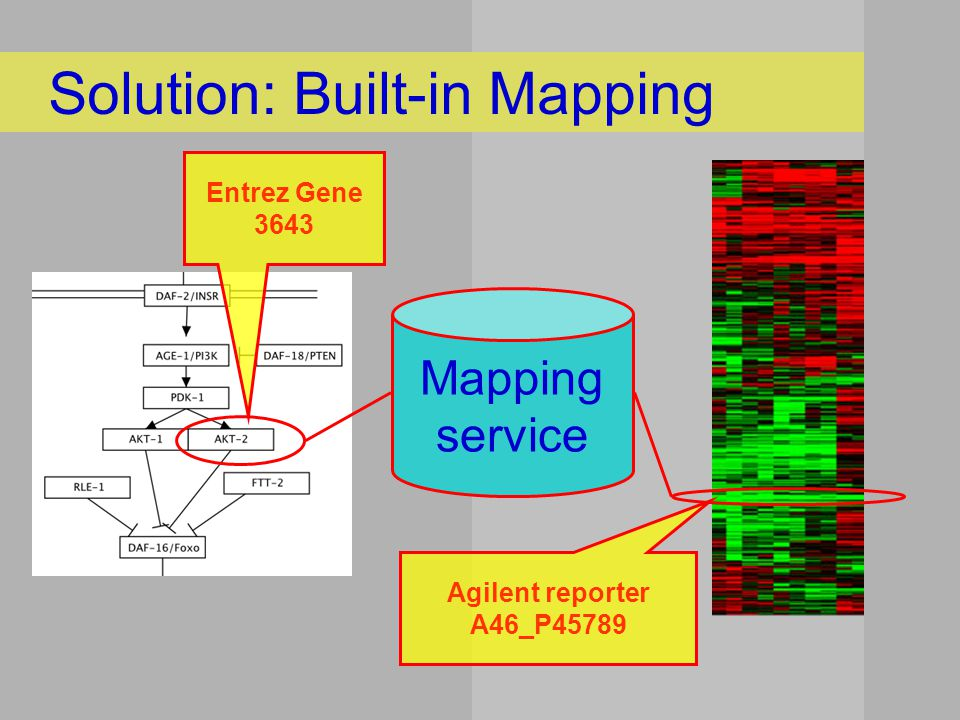 Synergizer EnsMart DAVID CRONOS AliasServer MatchMiner OntoTranslate Problem: Which mapping service?