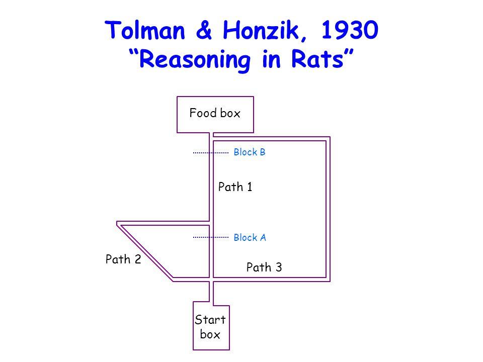 "Tolman & Honzik, 1930 ""Reasoning in Rats"" Food box Path 1 Path 3 Path 2 Block B Block A Start box"