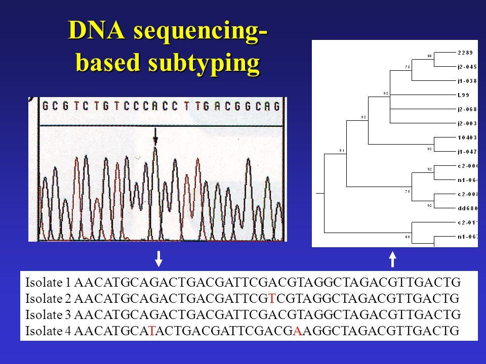 DNA sequencing- based subtyping Isolate 1AACATGCAGACTGACGATTCGACGTAGGCTAGACGTTGACTG Isolate 2AACATGCAGACTGACGATTCGTCGTAGGCTAGACGTTGACTG Isolate 3AACAT
