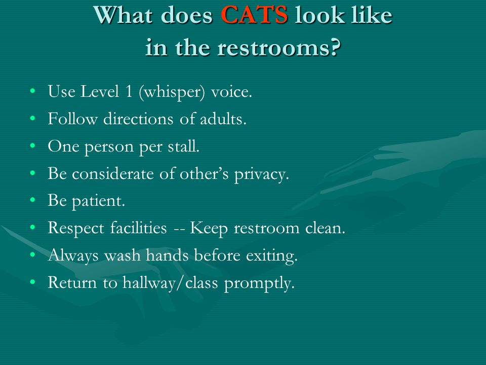 What does CATS look like in the restrooms. Use Level 1 (whisper) voice.
