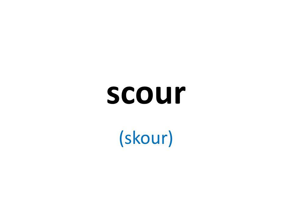 scour (skour)