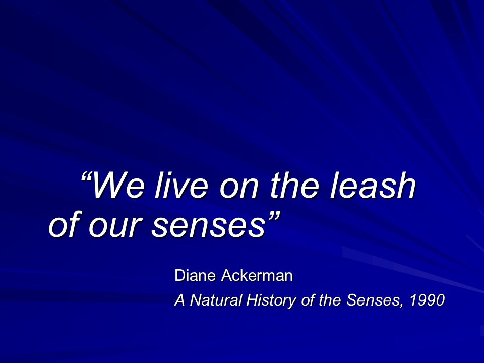 """We live on the leash of our senses"" Diane Ackerman A Natural History of the Senses, 1990"