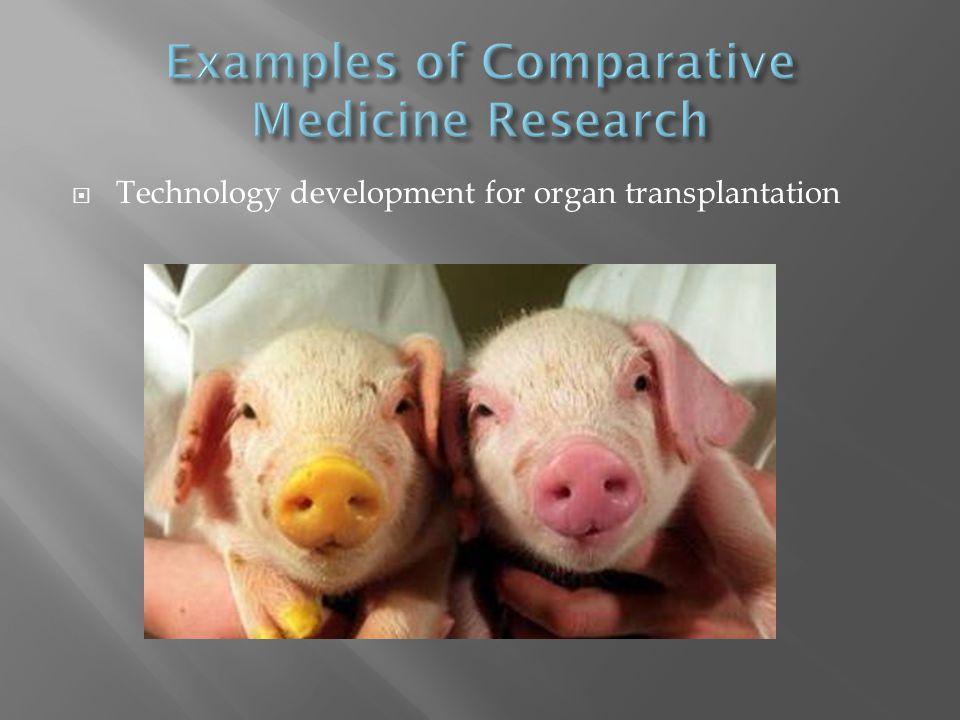  Technology development for organ transplantation