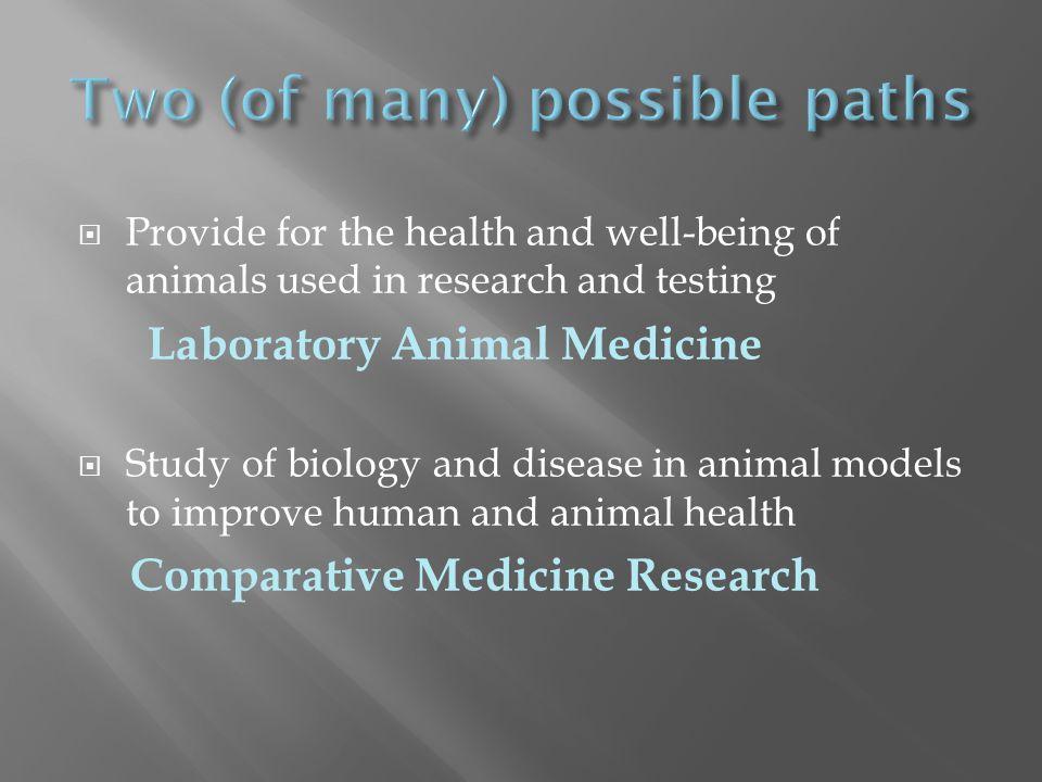 http://cvm.msu.edu/research/summer-research-program-1/merck-merial-veterinary-scholars/merck-merial-veterinary- scholars-national-and-canadian-research-opportunities-for-veterinary-students