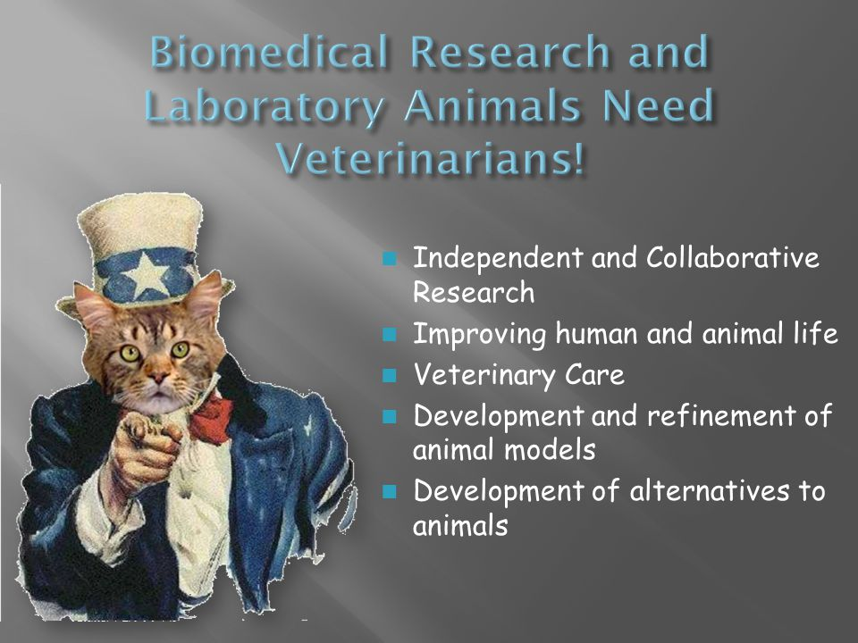 Independent and Collaborative Research Improving human and animal life Veterinary Care Development and refinement of animal models Development of alternatives to animals