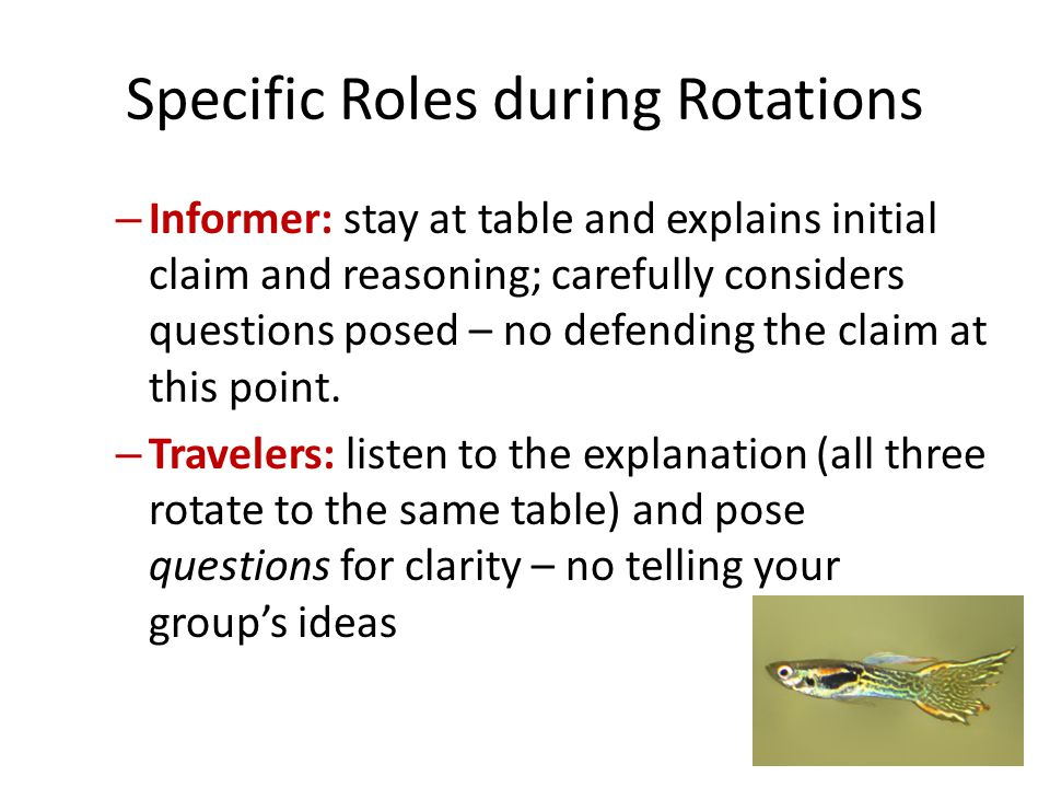 Specific Roles during Rotations – Informer: stay at table and explains initial claim and reasoning; carefully considers questions posed – no defending