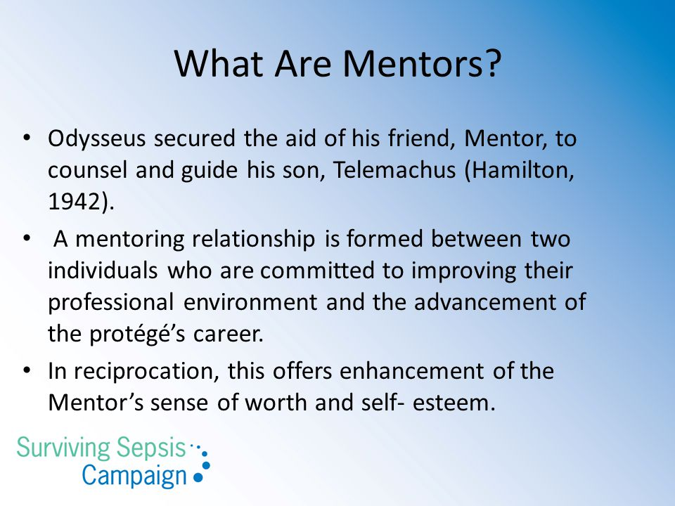 What Are Mentors.