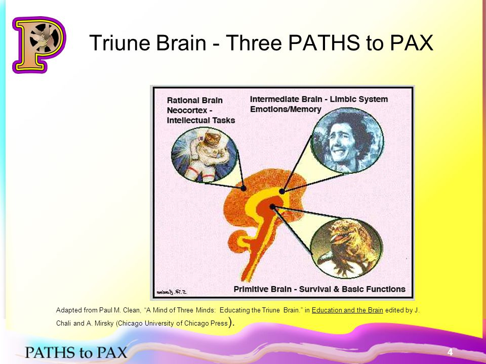 5 Ancient Brain PATHS to PAX Enables us to dodge hazards, seize opportunities, and live to see another day, and is a PATH to PAX –By PAX Cues –The language of PAX (US instead of Them) –Playing the Game –Neutral reactions by adults and peer –Imitative models of PAX Lieberman, P.