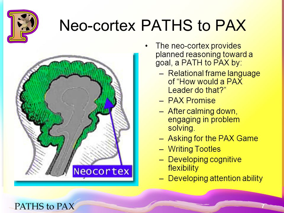 18 How to play the PAX Game 3 times per day A secret game several times per week Using brain science on the Stop and Go circuits in the brain for PRACTICE Building student self- control Day 1 Breakout