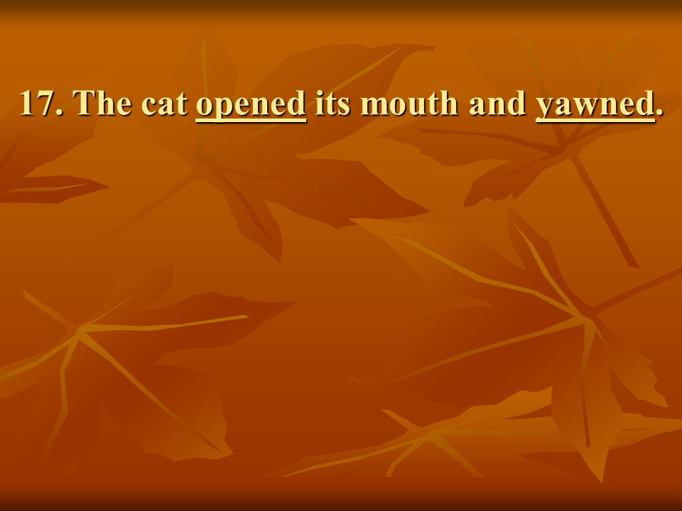 17. The cat opened its mouth and yawned.