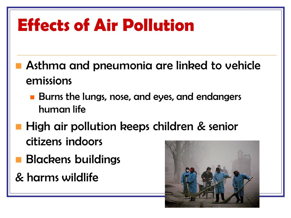 Effects of Air Pollution Asthma and pneumonia are linked to vehicle emissions Burns the lungs, nose, and eyes, and endangers human life High air pollu