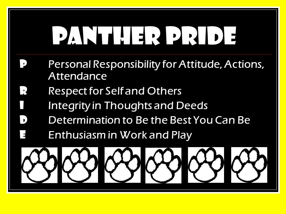 PANTHER PRIDE P Personal Responsibility for Attitude, Actions, Attendance R Respect for Self and Others I Integrity in Thoughts and Deeds D Determination to Be the Best You Can Be E Enthusiasm in Work and Play