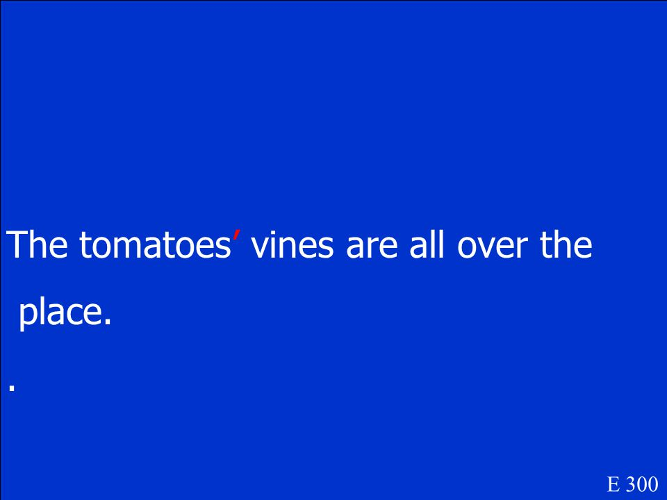 The tomatoes vines are all over the place E 300