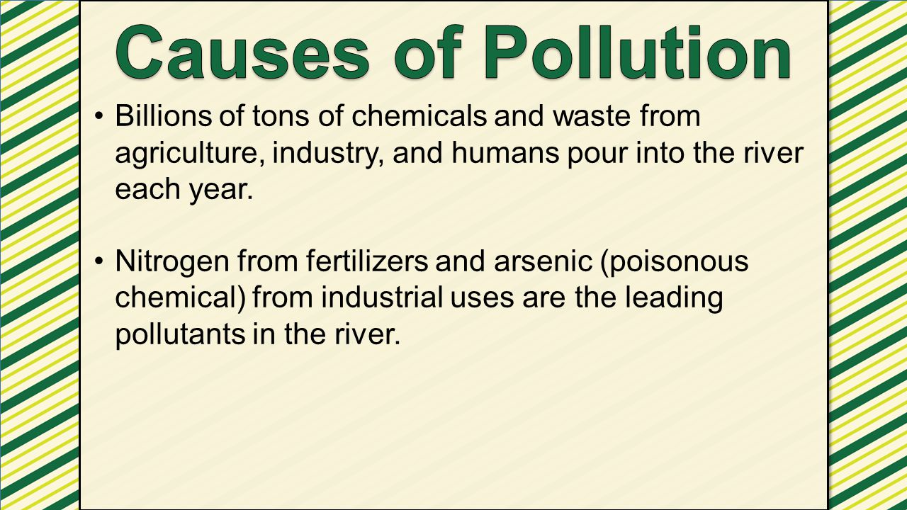 Billions of tons of chemicals and waste from agriculture, industry, and humans pour into the river each year. Nitrogen from fertilizers and arsenic (p