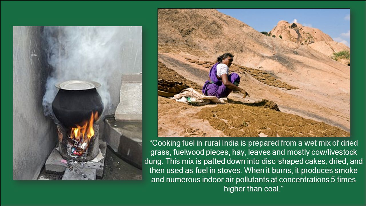 """""""Cooking fuel in rural India is prepared from a wet mix of dried grass, fuelwood pieces, hay, leaves and mostly cow/livestock dung. This mix is patted"""