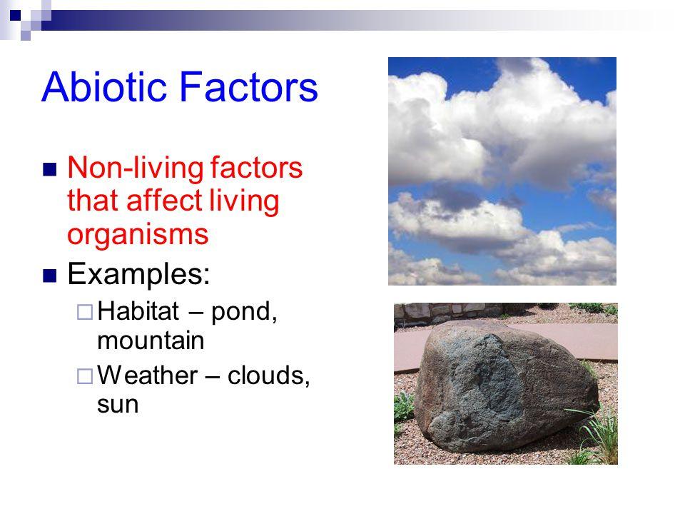 Abiotic Factors Non-living factors that affect living organisms Examples:  Habitat – pond, mountain  Weather – clouds, sun