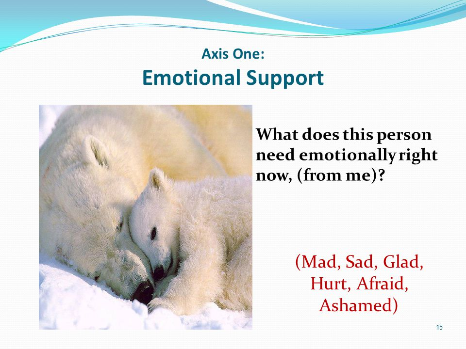 Axis One: Emotional Support What does this person need emotionally right now, (from me)? 15 (Mad, Sad, Glad, Hurt, Afraid, Ashamed)