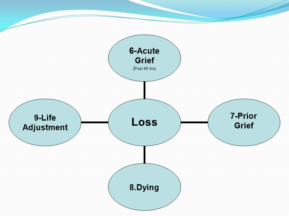 Loss 6-Acute Grief (Past 48 hrs) 7-Prior Grief8.Dying 9-Life Adjustment