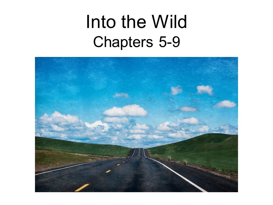 Into the Wild Chapters 5-9