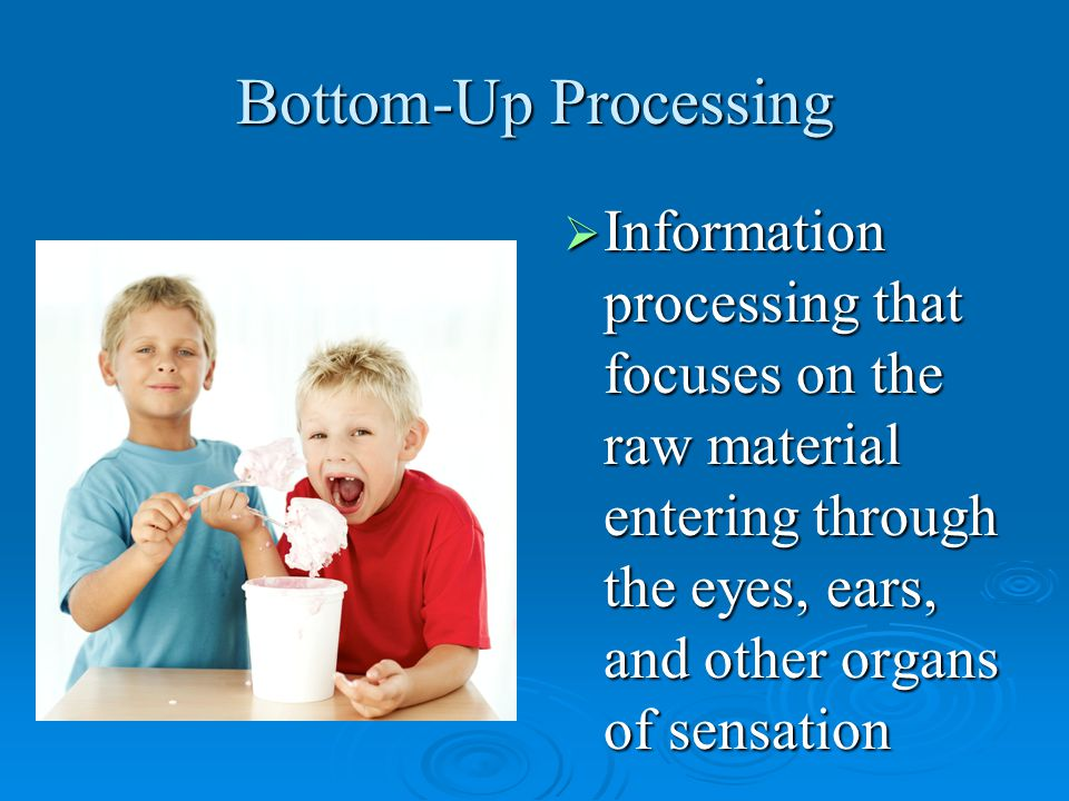 Bottom-Up Processing  Information processing that focuses on the raw material entering through the eyes, ears, and other organs of sensation