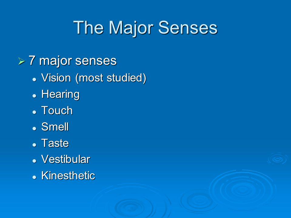 The Major Senses  7 major senses Vision (most studied) Vision (most studied) Hearing Hearing Touch Touch Smell Smell Taste Taste Vestibular Vestibula