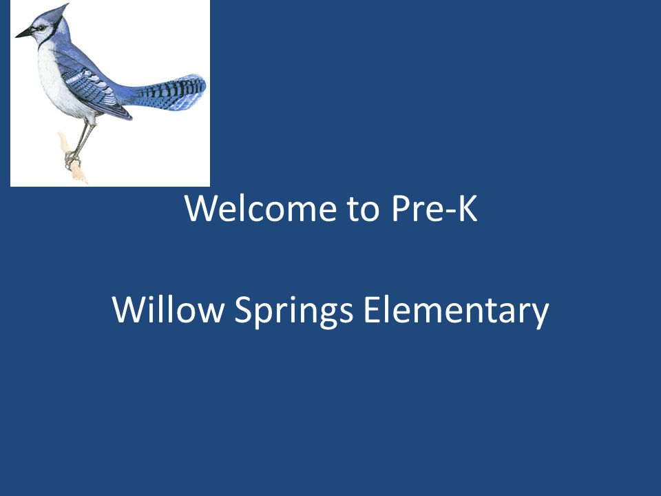 Welcome to Pre-K Willow Springs Elementary