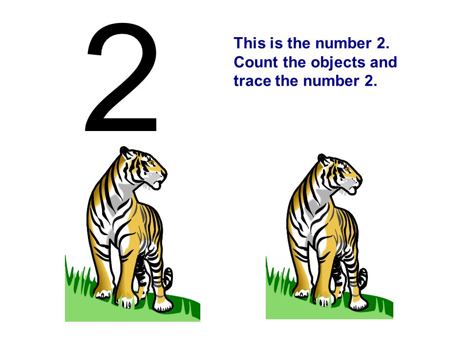 This is the number 2. Count the objects and trace the number 2. 2