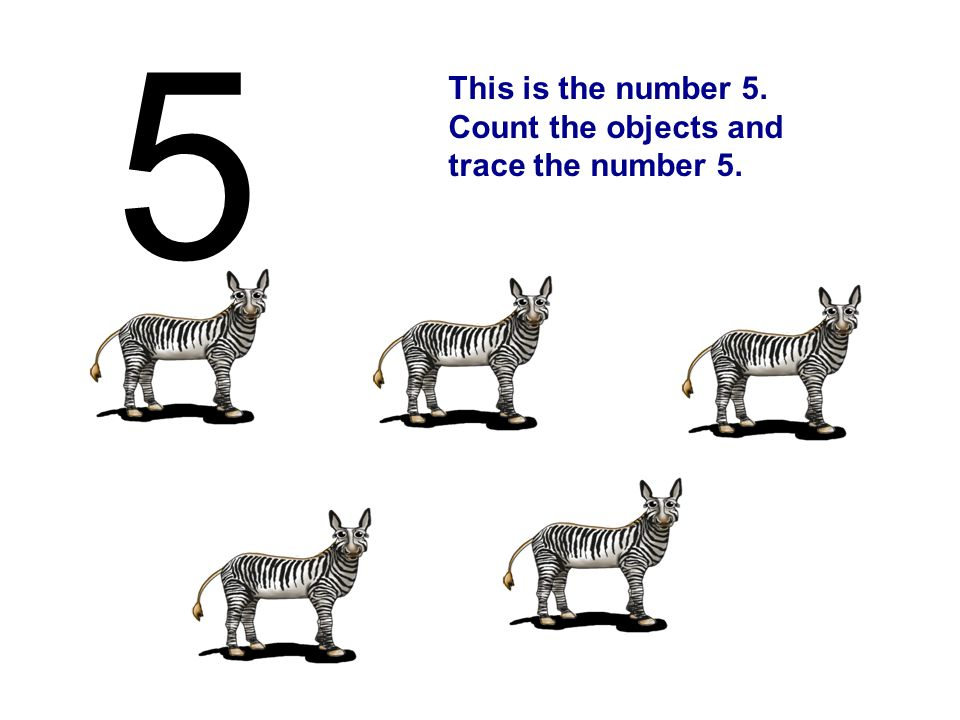 This is the number 5. Count the objects and trace the number 5. 5