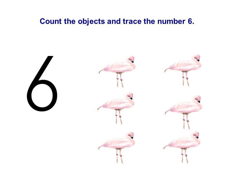 Count the objects and trace the number 6.