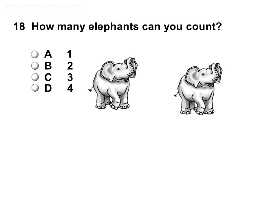 18How many elephants can you count A 1 B 2 C 3 D 4