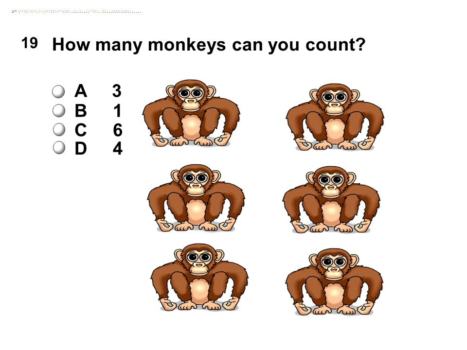 19 How many monkeys can you count A 3 B 1 C 6 D 4