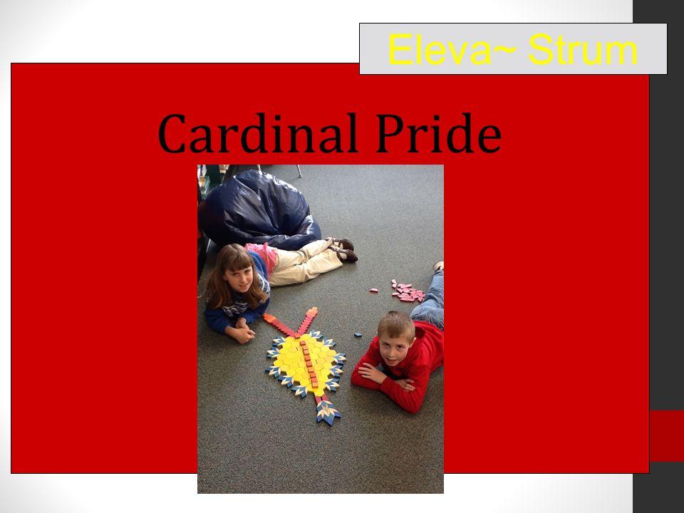 Cardinal Pride Eleva~ Strum