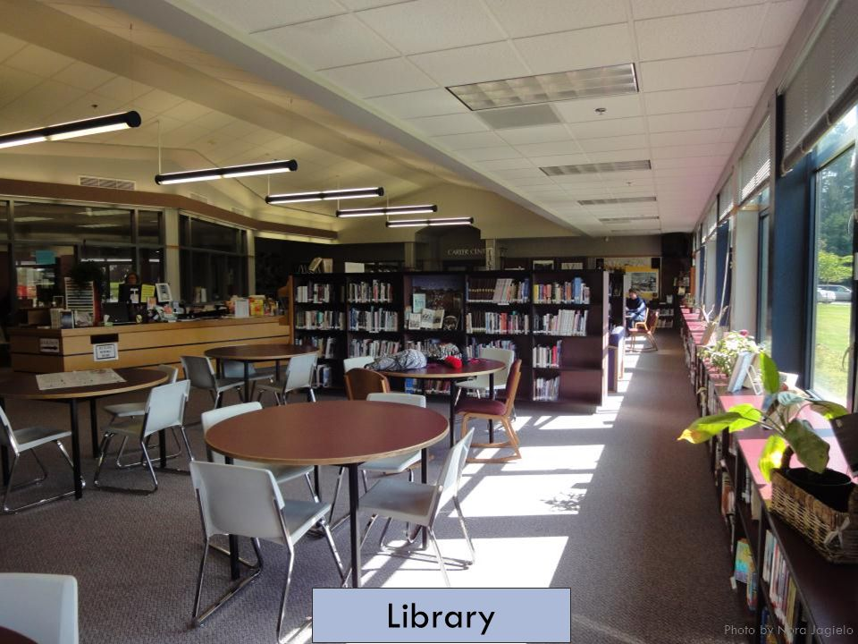 Library Photo by Nora Jagielo