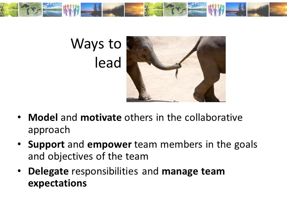Ways to lead Model and motivate others in the collaborative approach Support and empower team members in the goals and objectives of the team Delegate responsibilities and manage team expectations
