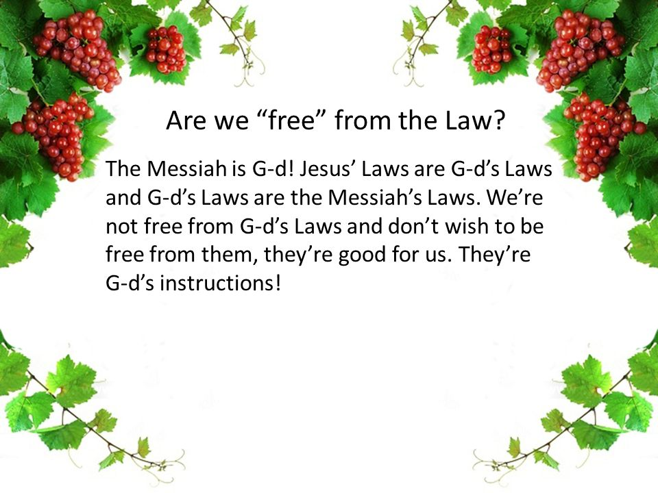 The Messiah is G-d! Jesus' Laws are G-d's Laws and G-d's Laws are the Messiah's Laws. We're not free from G-d's Laws and don't wish to be free from th