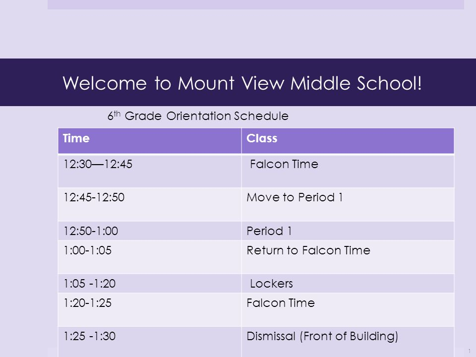 Welcome to Mount View Middle School! TimeClass 12:30—12:45 Falcon Time 12:45-12:50Move to Period 1 12:50-1:00Period 1 1:00-1:05Return to Falcon Time 1