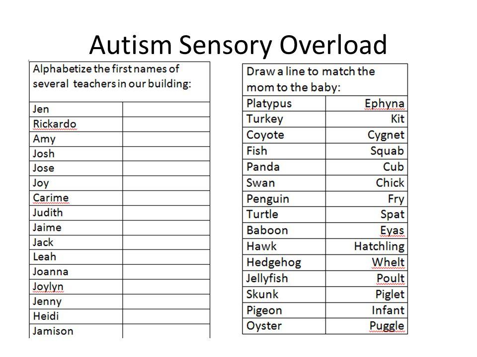 Autism Sensory Overload