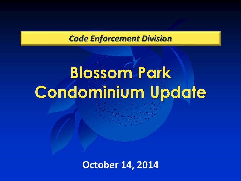Blossom Park Condominium Update Code Enforcement Division October 14, 2014