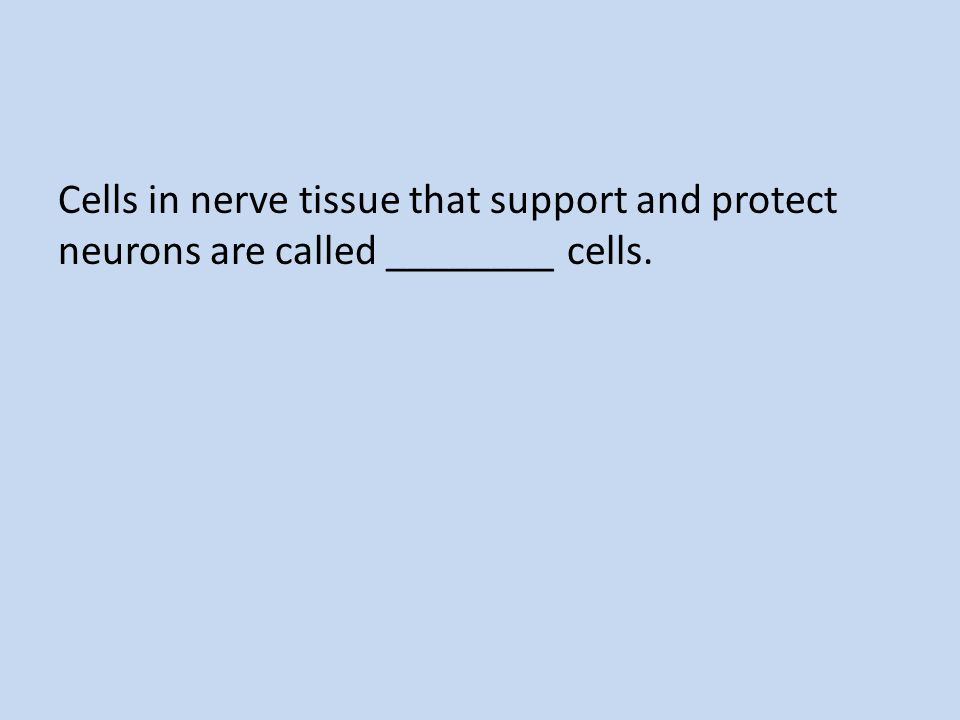 Given a particular neuron, an action potential either occurs or does not occur, depending on the strength of the stimulus; therefore, the action potential is described as ________.