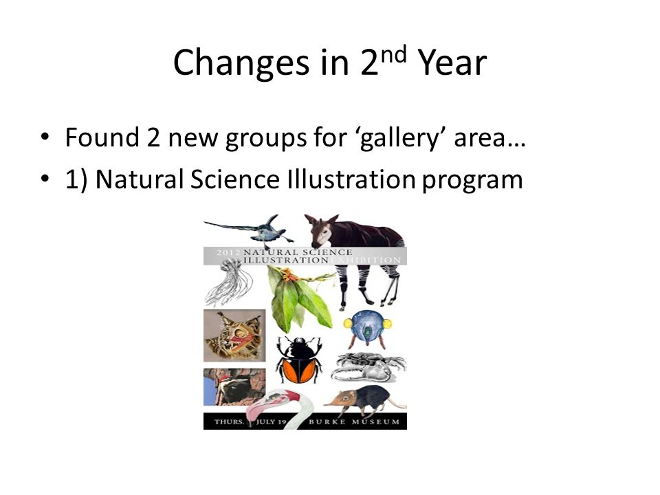 Changes in 2 nd Year Found 2 new groups for 'gallery' area… 1) Natural Science Illustration program