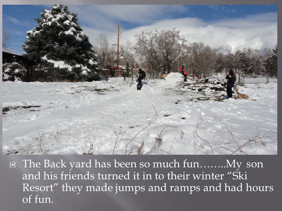 """ The Back yard has been so much fun……..My son and his friends turned it in to their winter """"Ski Resort"""" they made jumps and ramps and had hours of fu"""