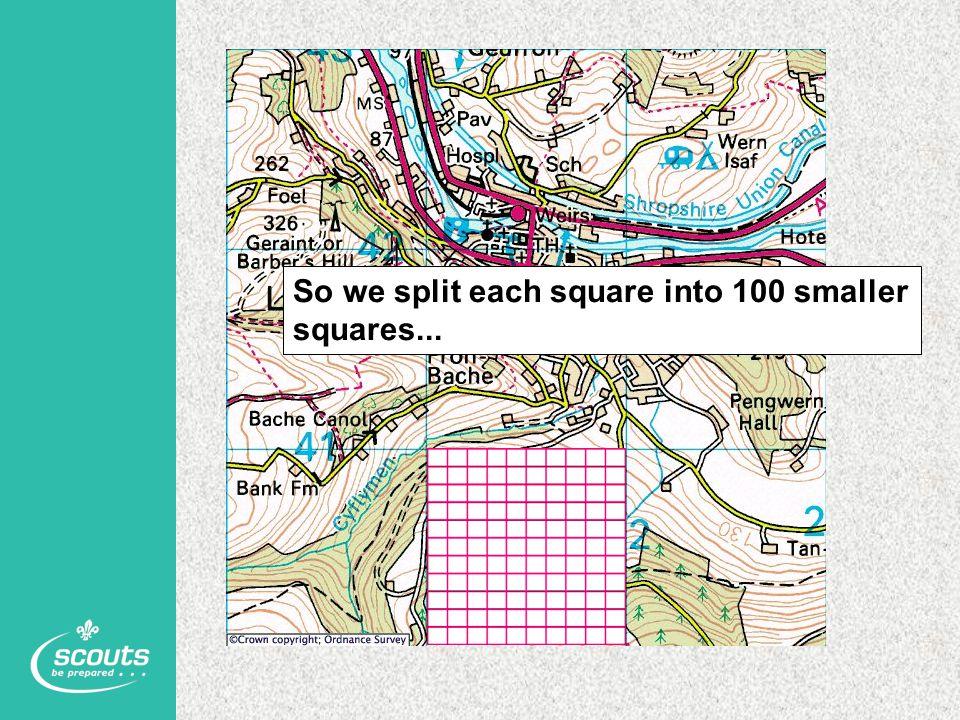 So we split each square into 100 smaller squares...