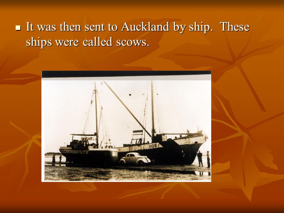 It was then sent to Auckland by ship. These ships were called scows.