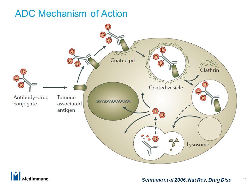 ADC Mechanism of Action 11 Schrama et al 2006. Nat Rev. Drug Disc