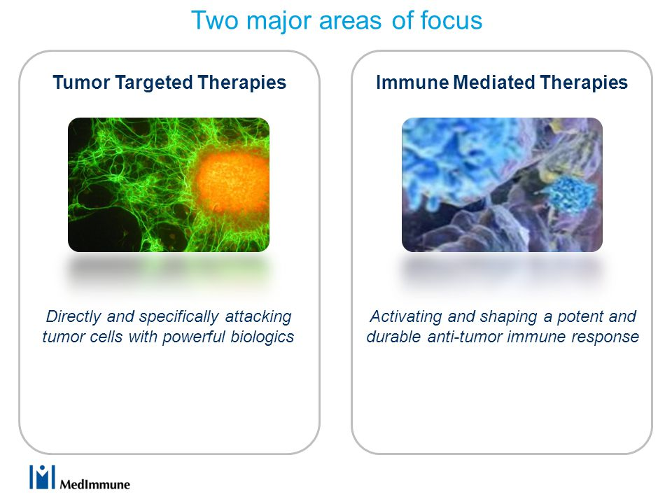 Tumor Targeted Therapies Activating and shaping a potent and durable anti-tumor immune response Directly and specifically attacking tumor cells with powerful biologics Immune Mediated Therapies Two major areas of focus