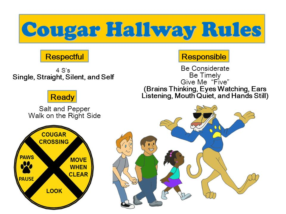 Cougar Playground Rules Share Include others Take care of the equipment Respectful Follow Recess Rules Return the equipment Responsible Line up quickly and quietly Ready